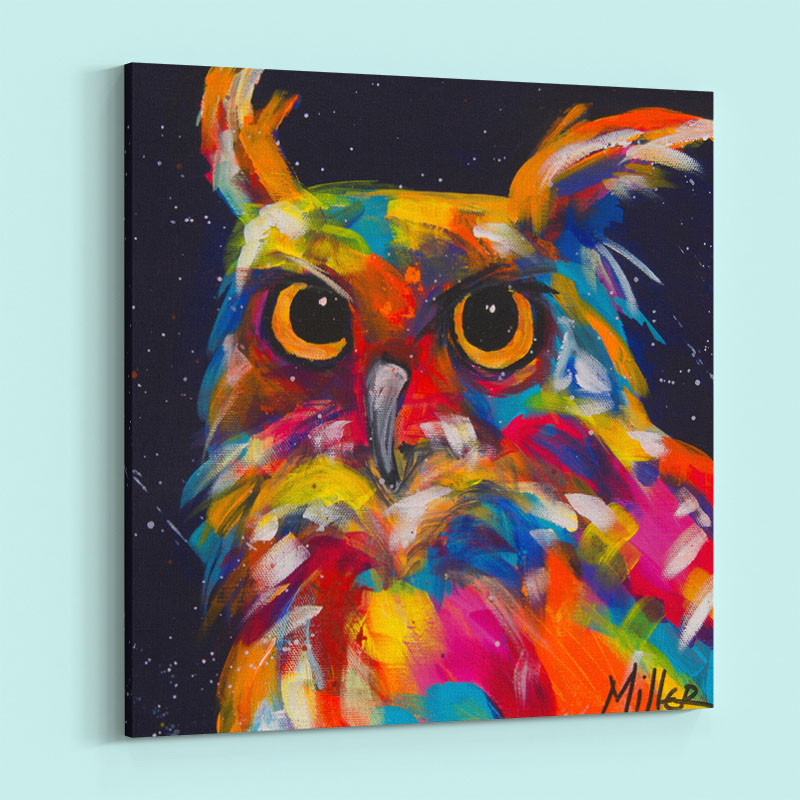 Serious Colorful Owl